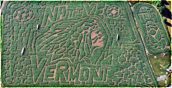 Danville Corn Maze